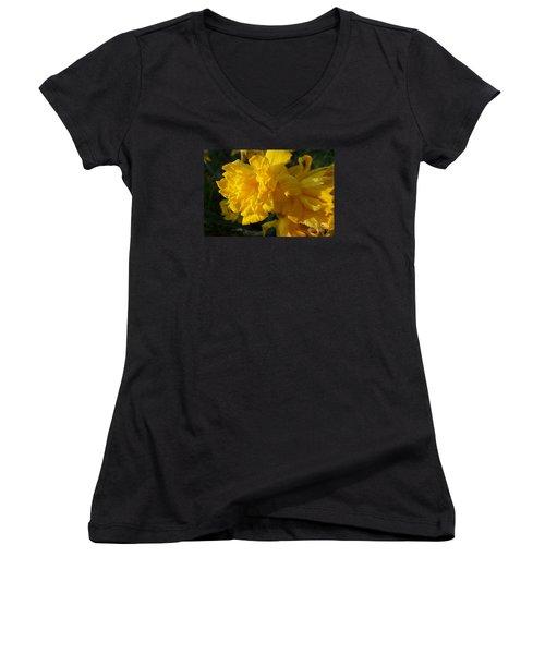 Yellow Daffodils Women's V-Neck T-Shirt (Junior Cut) by Jean Bernard Roussilhe