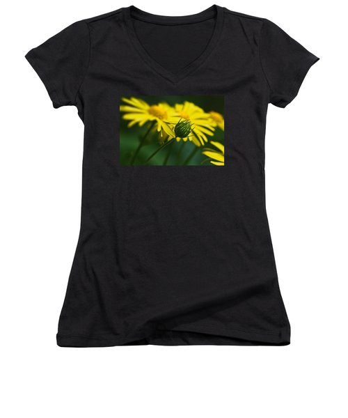 Yellow Daisy Bud Women's V-Neck (Athletic Fit)