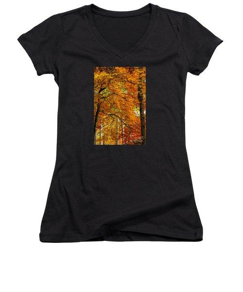 Yellow Leaves Women's V-Neck T-Shirt