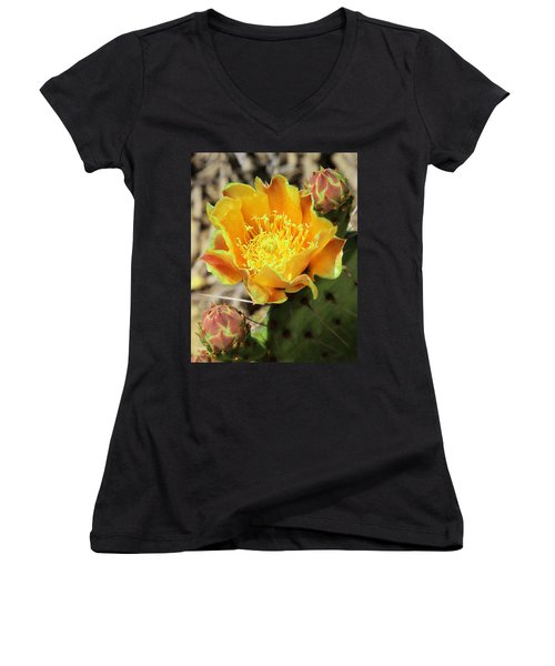 Yellow Prickly Pear Cactus Women's V-Neck