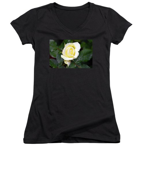 Yellow Rose 1 Women's V-Neck (Athletic Fit)