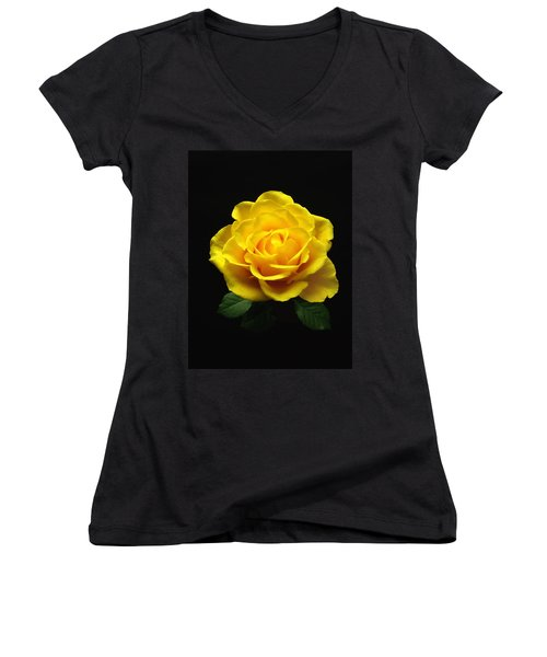 Yellow Rose 6 Women's V-Neck (Athletic Fit)
