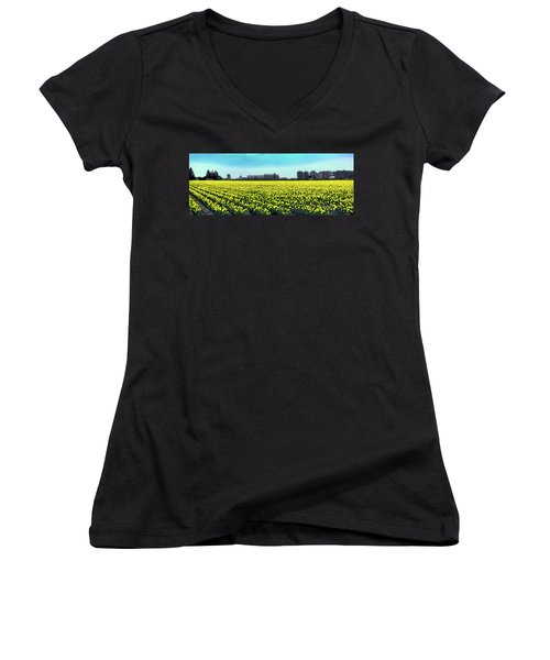 Yellow Tulip Fields Women's V-Neck T-Shirt (Junior Cut) by David Patterson