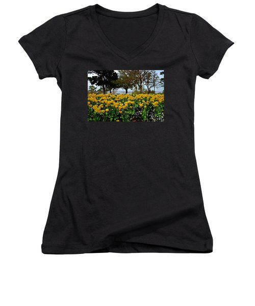 Yellow Tulips Of Fairhope Alabama Women's V-Neck