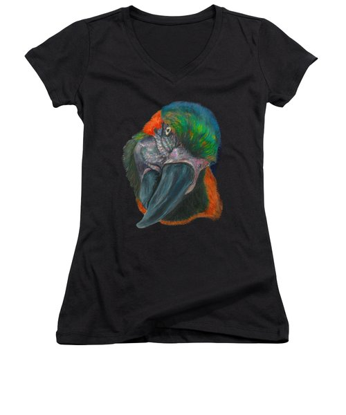 You Looking At Me Women's V-Neck T-Shirt (Junior Cut) by Tricia Winwood