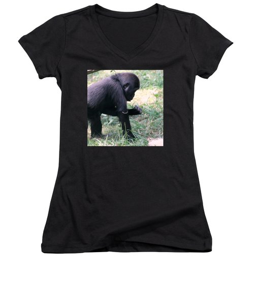 Women's V-Neck T-Shirt (Junior Cut) featuring the photograph Young Gorilla by Laurel Talabere