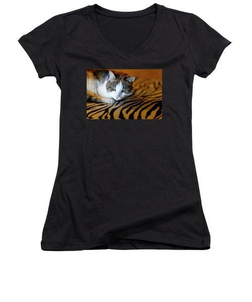 Zebra Cat Women's V-Neck