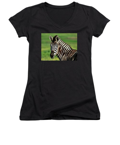 Zebra Close Up Women's V-Neck T-Shirt (Junior Cut) by Werner Lehmann
