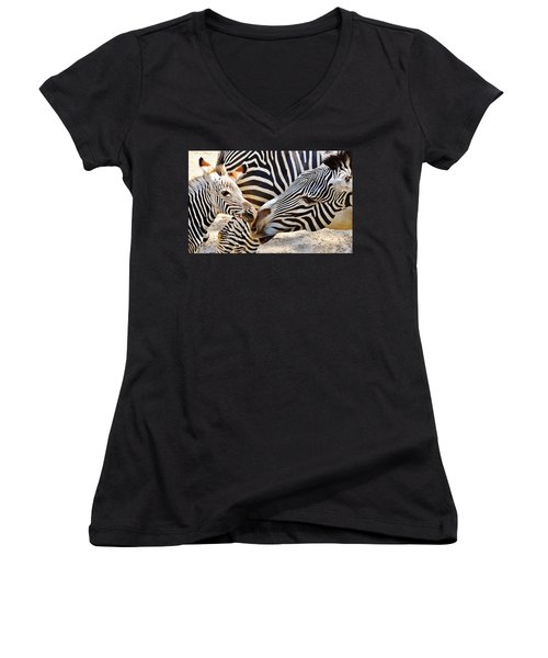 Zebra Mother And Calf Women's V-Neck (Athletic Fit)