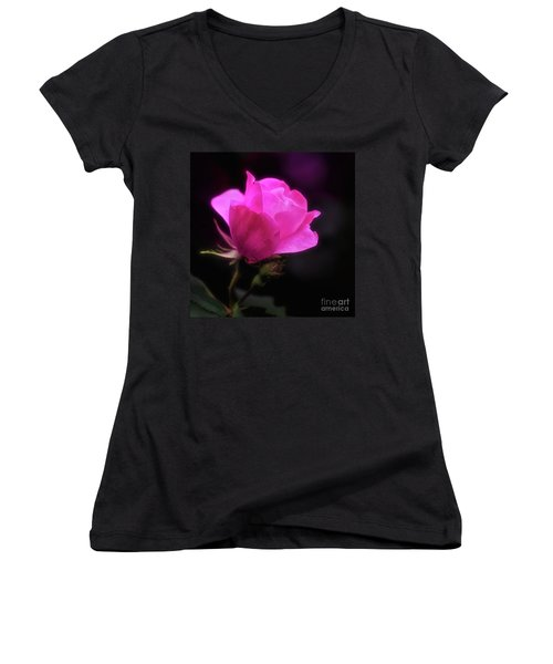 Anniversary Rose Women's V-Neck