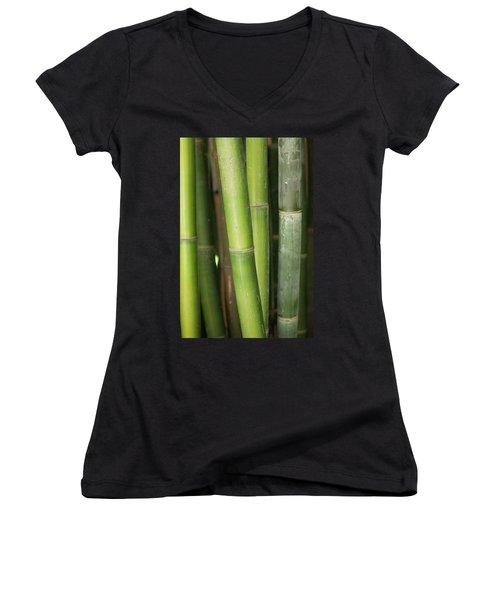 Bamboo Stalk 4057 Women's V-Neck