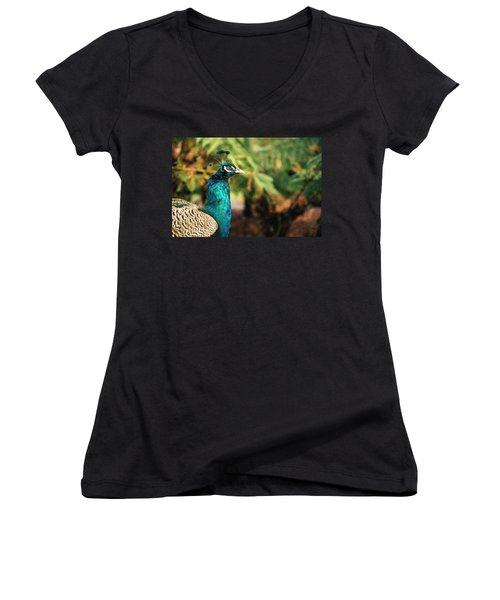 Beautiful Colourful Peacock Outdoors In The Daytime. Women's V-Neck