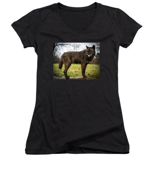 Black Wolf Women's V-Neck