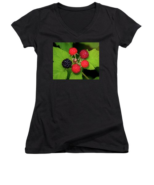 Blackberries Women's V-Neck