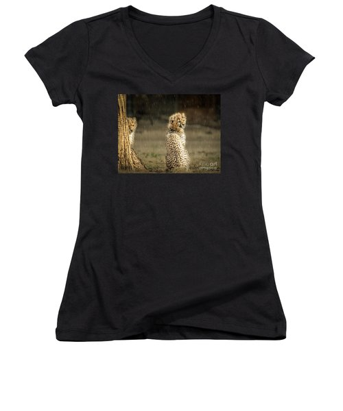 Cheetah Cubs And Rain 0168 Women's V-Neck