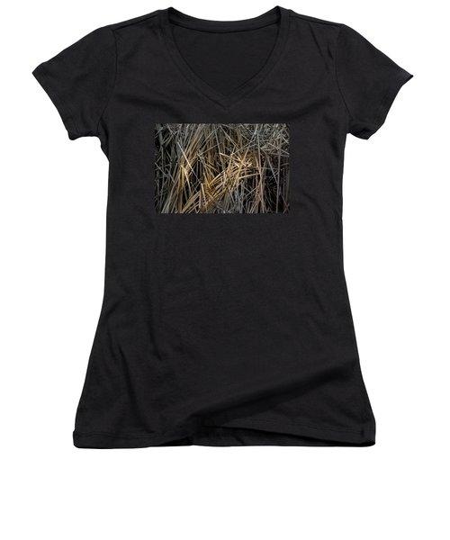 Dried Wild Grass IIi Women's V-Neck