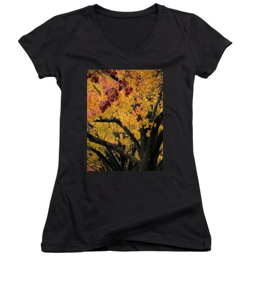 Fall In Carlyle Women's V-Neck