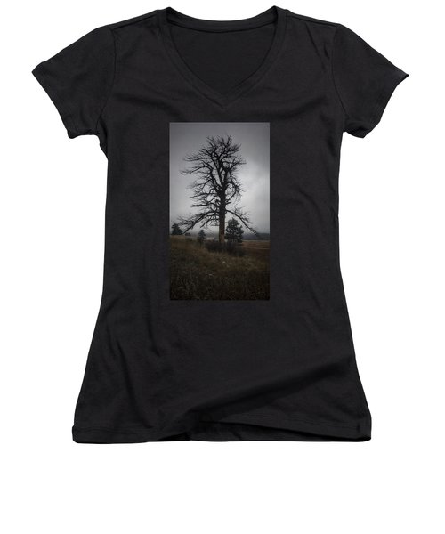 Women's V-Neck featuring the photograph Ghostly Snag by Dan Miller