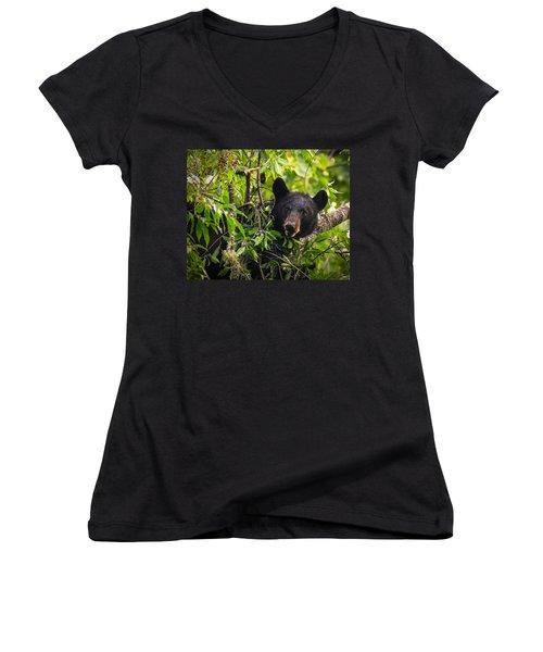 Great Smoky Mountains Bear - Black Bear Women's V-Neck