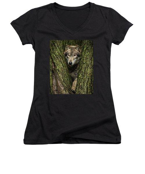 Hangin In The Tree Women's V-Neck