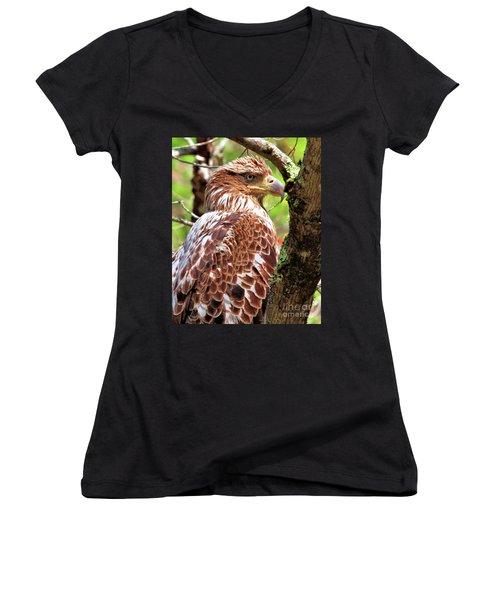 Immature Eagle Women's V-Neck