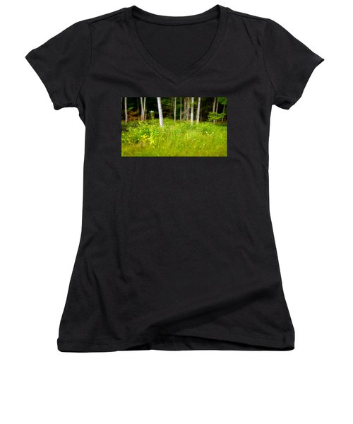 Into The Wild Women's V-Neck