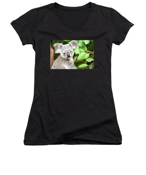 Koala Women's V-Neck