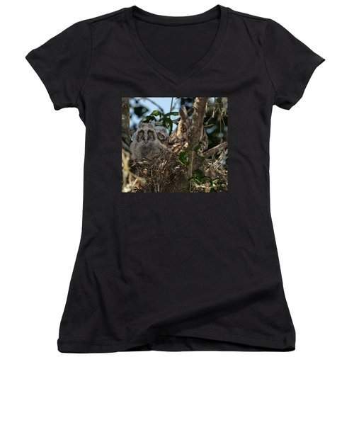 Long-eared Owl And Owlets Women's V-Neck