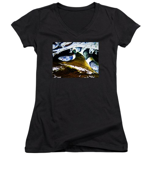 Women's V-Neck (Athletic Fit) featuring the photograph Longnosed Snake In The Desert by Judy Kennedy
