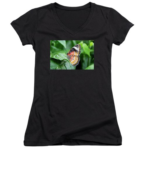Multi Colored Butterfly Women's V-Neck