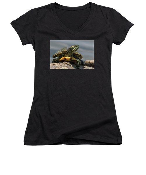 Portrait Of A Turtle Women's V-Neck