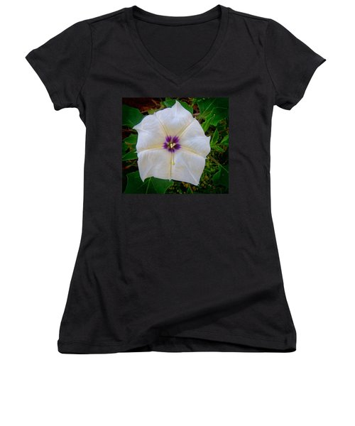 Women's V-Neck (Athletic Fit) featuring the photograph Sacred Datura - Full Bloom by Judy Kennedy