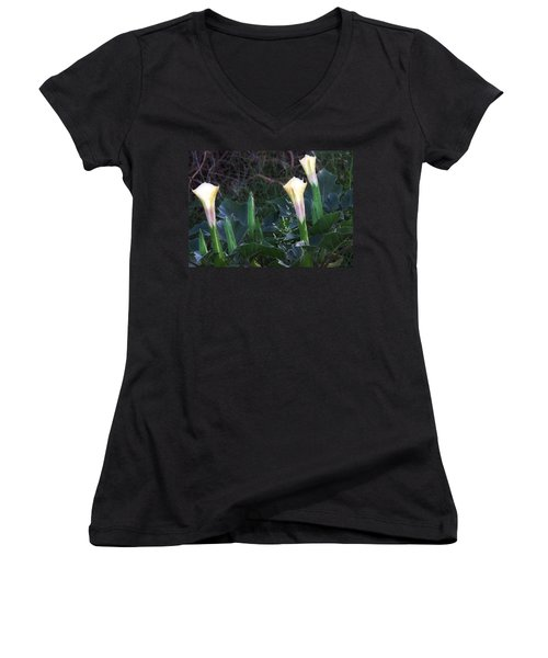 Women's V-Neck (Athletic Fit) featuring the photograph Sacred Datura Trio - Partial Blooms by Judy Kennedy