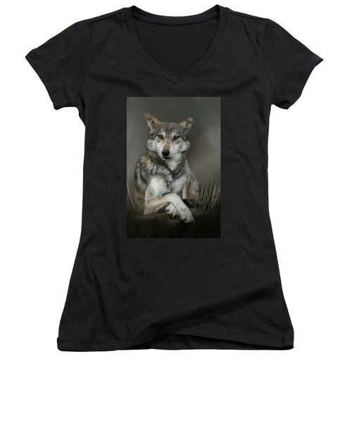 Sitting Pretty Women's V-Neck