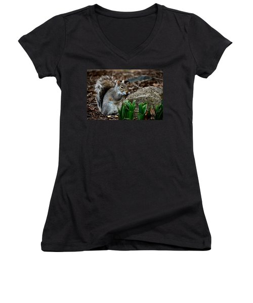 Squirrel And His Dinner Women's V-Neck