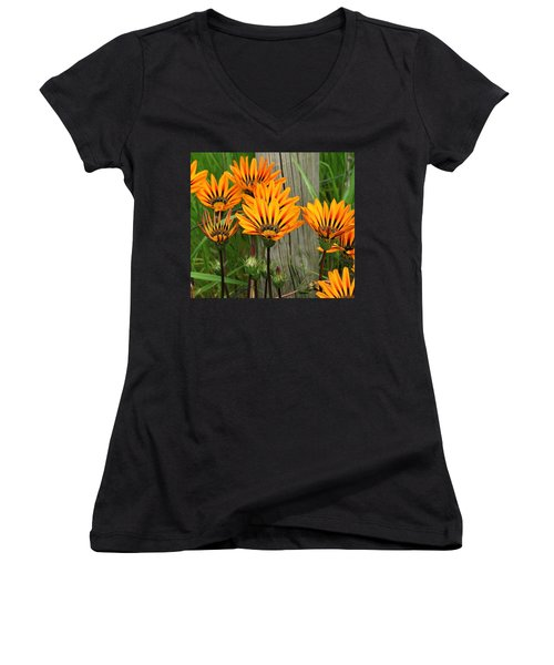 Standing To Attention  Women's V-Neck