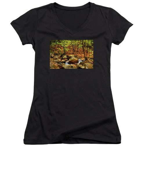 Women's V-Neck (Athletic Fit) featuring the photograph Stream Rages In Ma by Raymond Salani III