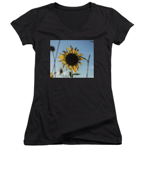 Summer Afternoon Women's V-Neck