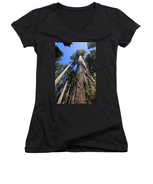 Towering Redwoods Women's V-Neck