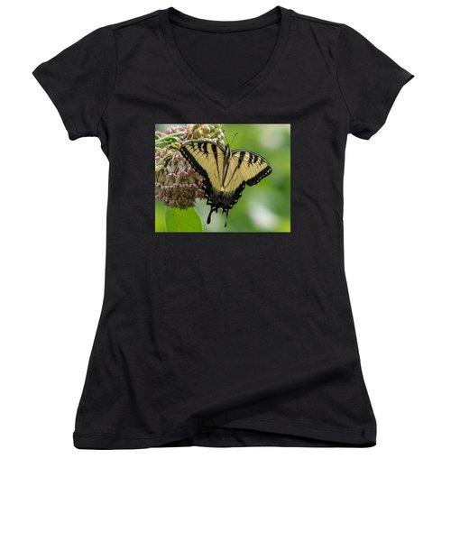 Yellow Swallowtail Butterfly Women's V-Neck