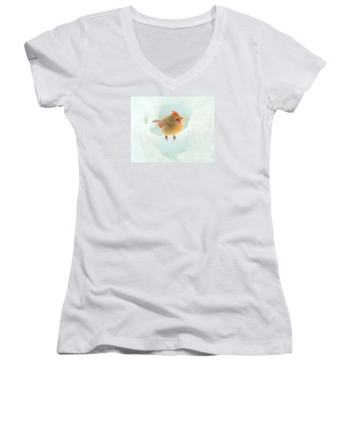 Baby Female Cardinal Women's V-Neck T-Shirt (Junior Cut) by Janette Boyd