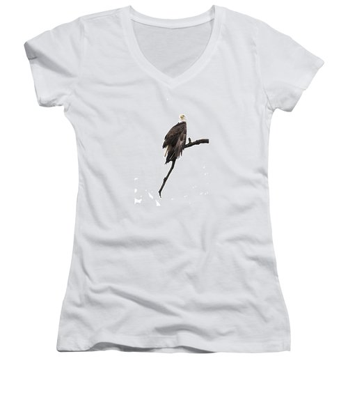 Bald Eagle 5 Women's V-Neck T-Shirt (Junior Cut) by David Lester