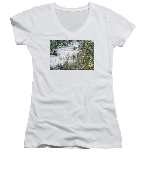 Blackwater Falls Women's V-Neck