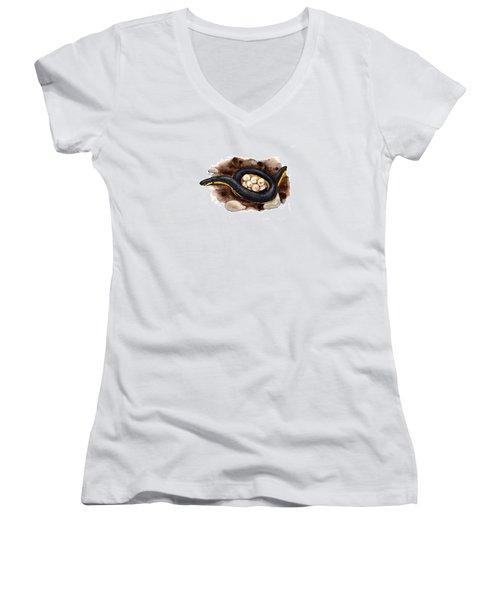 Caecilian Women's V-Neck T-Shirt (Junior Cut) by Cindy Hitchcock