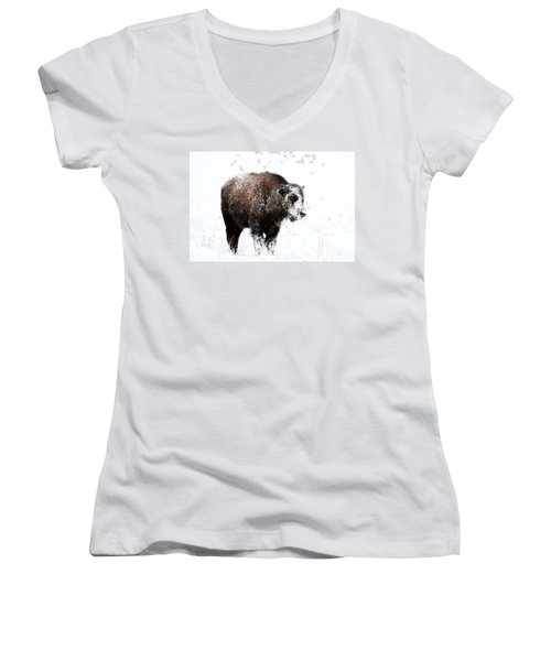 Lone Calf Women's V-Neck T-Shirt