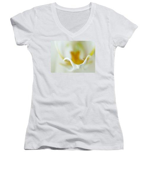 Moth Orchid Macro Women's V-Neck T-Shirt