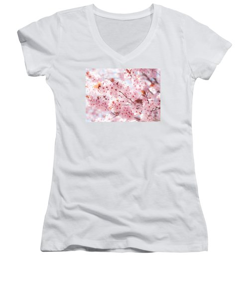 Spring Women's V-Neck (Athletic Fit)