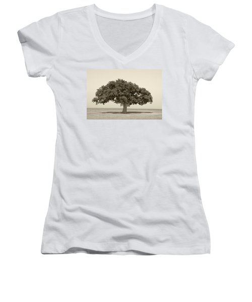 The Lonely Tree Women's V-Neck T-Shirt (Junior Cut) by Charles Beeler