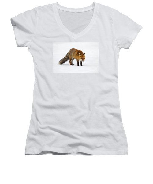 Women's V-Neck T-Shirt (Junior Cut) featuring the photograph 130201p052 by Arterra Picture Library
