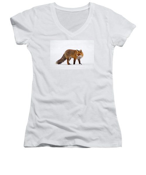 Women's V-Neck T-Shirt (Junior Cut) featuring the photograph 130201p054 by Arterra Picture Library